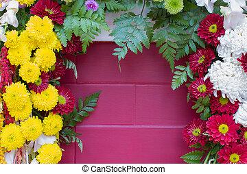 rosa,  copyspace, parete, mezzo, vario, fiori