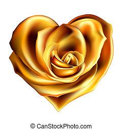 rosa, coração ouro