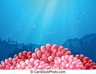 rosa, corales, mar, debajo