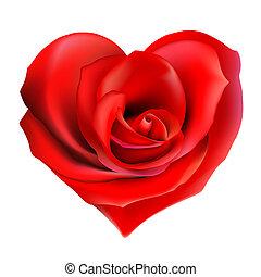 rosa, corazón rojo