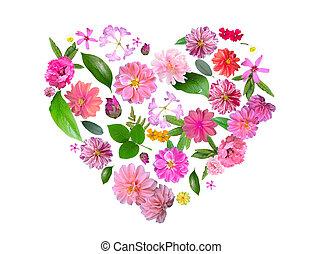 rosa, cuore, fatto, estate, foglie, isolato, verde, fiori