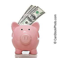 rosa, effetti, dollaro, piggy, cento, banca