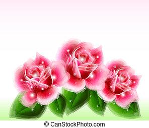 rosa, elements., rosen, vektor, design, blumen-