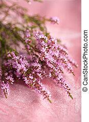 rosa, erica, mazzolino, sopra, fondo, fiori