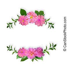 rosa, estate, fatto, cornice, isolato, verde, fiori, foglie