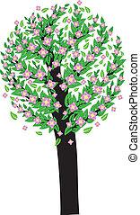 rosa, fiore, albero