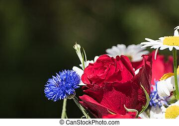 rosa, fiore, boquet, rosso