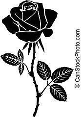 rosa, fiore, silhouette