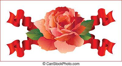 rosa, fitas