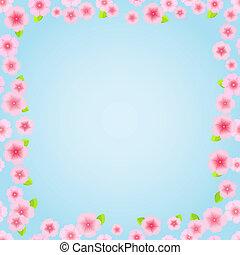 rosa, floreale, cornice, sakura