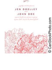 rosa, floreale, vettore, fondo