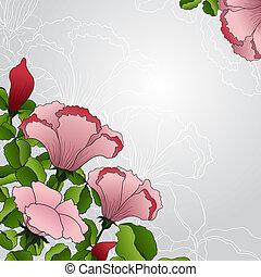 rosa florece, plano de fondo