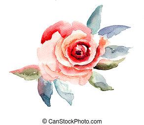 rosa, flores, ilustración