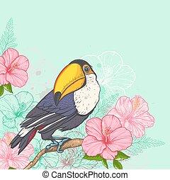 rosa, flores tropicales, y, tucán