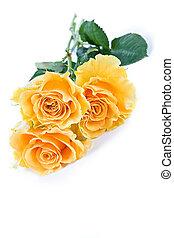 rosa, fundo amarelo