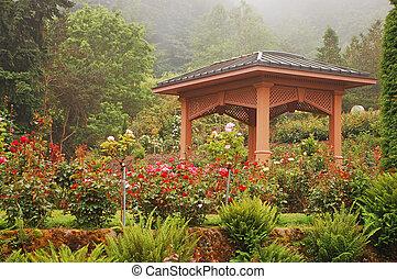 rosa, gazebo, jardín