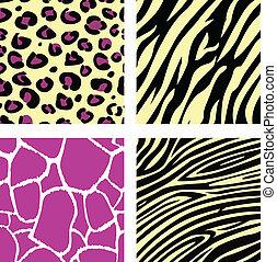 rosa, &, gelber , tier, leopar, tiger, zebra, und, giraffe, muster, /