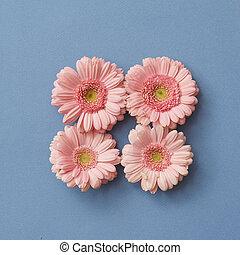 rosa, gerbera, flores, en, el, forma, de, un, cuadrado, en, un, papel rosa, fondo.