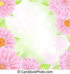 rosa, gerbers, ram