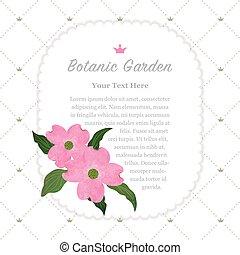 rosa, giardino botanico, colorito, natura, cornus, promemoria, florida, struttura, acquarello, vettore, dogwood, cornice