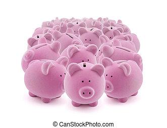 rosa, grupo grande, bancos guarros