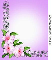 rosa, hibiskus, einladung, umrandungen