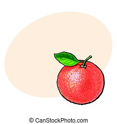 rosa, hoja, maduro, brillante, toronja, naranja, entero, rojo