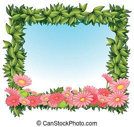 rosa, hojas, flores, encuadrado