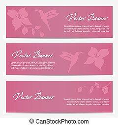 rosa, imagen,  vector, diseño, Plano de fondo, bandera, Colibrí