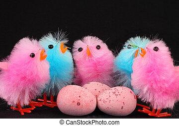 rosa, küken, eier, blaues, ostern