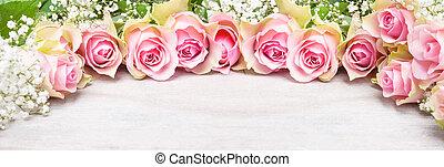 rosa, karte, atem, babys, gruß, rosen, banner