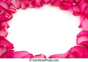 rosa kronblad, vita, bakgrund
