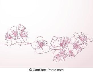 rosa, kunst, grobdarstellung, drawing., fruehjahr, pflaume, ...