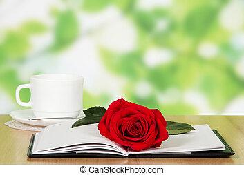 rosa, libro
