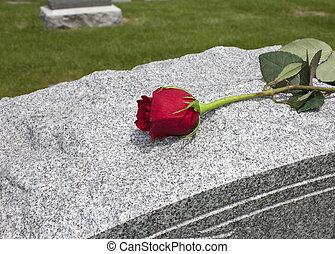 rosa, ligado, um, sepultura