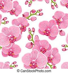 rosa, lila, muster, seamless, phalaenopsis, hintergrund.,...
