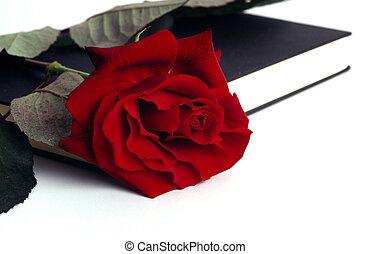 rosa, livro