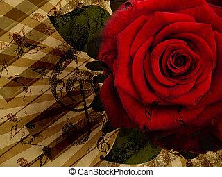 rosa, música, experiência vermelha