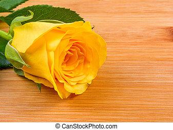 rosa, madeira, fundo amarelo
