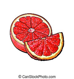 rosa, maduro, toronja, ilustración, mano, mitad, dibujado, cuarto