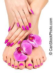 rosa, manicura, y, pedicura, con, un, orquídea, flor