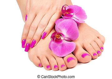 rosa, manicura, y, pedicura, con, un, orquídea, flower.,...