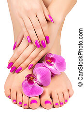 rosa, manikyr, och, pedikyr, med, a, orkidé, blomma