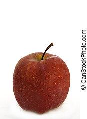 rosa, -, manzana, pacífico