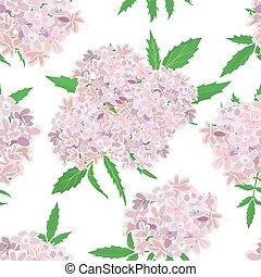 rosa, modello, fiori bianchi, fondo
