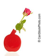 rosa, moderno, vaso