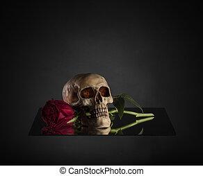 rosa, Morder, rojo, cráneo, tallo