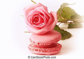rosa, mother's, amore, gentile, rosa, nostalgia, tenerezza, amaretto, retro, vendemmia, valentine's, giorno, felice