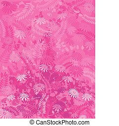rosa, natur