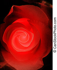 rosa, nero rosso
